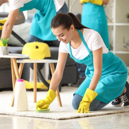 professional carpet cleaner in sydney